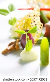 Creative cuisine, close up meal