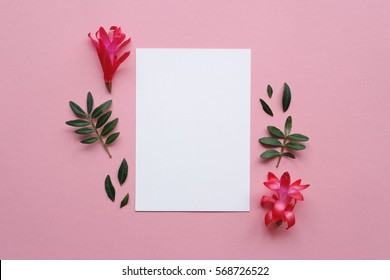 Creative decorated and arranged flat lay frame concept with blank card template and flowers on pink background. Top view.