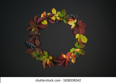 Creative design concept wreath of colorful fall leaves on black minimalistic background