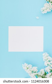 Creative flat lay concept top view of blank postcard frame mock up and white lilac flowers petals on pastel blue background with copy space in minimal style, template for lettering, text or design