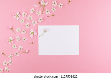 Creative flat lay concept top view of blank postcard frame mock up and cherry tree flowers on pastel millennial pink background with copy space in minimal style, template for lettering, text or design