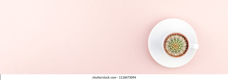 Creative flat lay overhead top view small pot with decorative cactus plant in cup with copy space millennial pink paper background in minimalism style. Long wide banner for feminine blog social media
