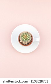 Creative flat lay overhead top view small pot with decorative cactus plant in cup with copy space millennial pink paper background in minimalism style. Trendy template for feminine blog social media