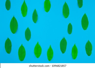 Creative flat lay top view pattern with fresh green leaves on bright blue background with copy space in minimal pop art style, template for text