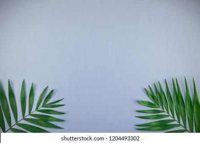 Creative flat lay top view of green tropical palm leaves on blue grey paper background with copy space. Minimal tropical palm leaf plants summer concept template for your text or design