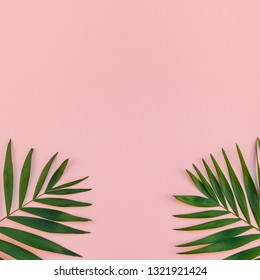 Creative flat lay top view of green tropical palm leaves millennial pink paper background with pineapples copy space. Minimal tropical palm leaf plants summer concept template for your text or design