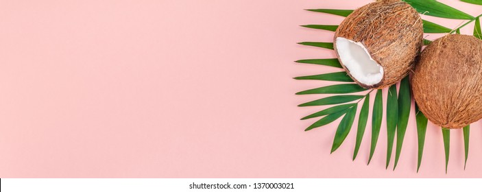 Creative flat lay top view of green tropical palm leaves coconut fruits and coconut oil cosmetics for skin and hair care on pink paper background copy space. Minimal tropical summer beauty spa concept