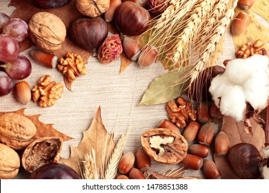 Creative Harvest Design with,walnut,hazelnut,chestnut,wheat ears,cotton ball,plum,grape and dry autumn leaves and copy space on center