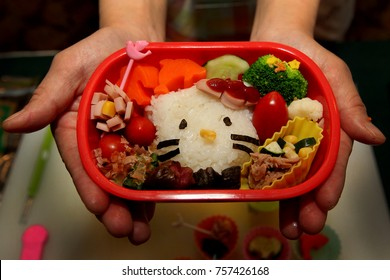 Creative Hello kitty Kids lunch box by mother 's love