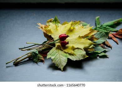 Creative layout of colorful autumn leaves. Flat lay. Season concept.