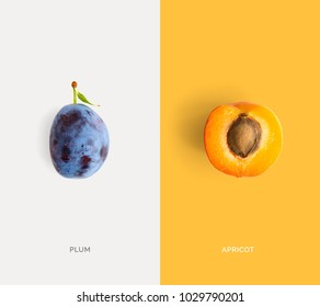 Creative layout made of apricot and plum. Flat lay. Food concept. Macro  concept.