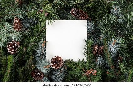 Creative layout made of Christmas tree branches with paper card note, pine cones. Xmas and New Year theme. Flat lay, top view