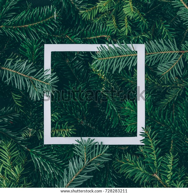 Creative layout made of Christmas tree branches with paper card note. Flat lay. Nature New Year concept.