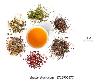 Creative layout made of cup of tea, green tea, black tea, fruit and herbal tea, sencha, ginger on white background.Flat lay. Food concept.