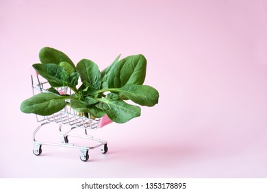 Creative layout made of green fresh vegetarian salad leaves in shopping trolley. Spinach on pink background with right copy space. Healthy food and vegetarian concept. Sale, discount concept.