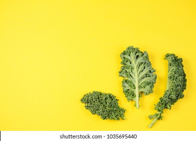 Creative layout made of kale leaves on blue background