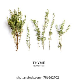 Creative layout made of thyme. Flat lay. Food concept. Thyme on the white background.