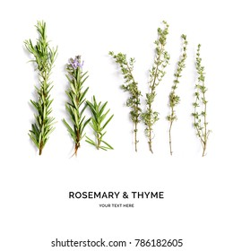 Creative layout made of thyme and rosemary . Flat lay. Food concept. Rosemary and thyme on the white background.