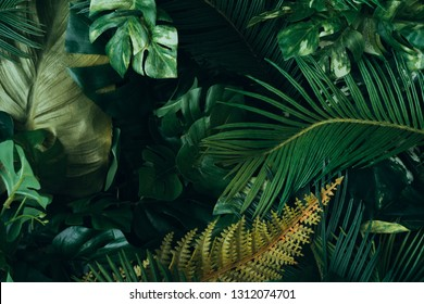 Creative layout made of tropical leaves. Flat lay. Nature concep