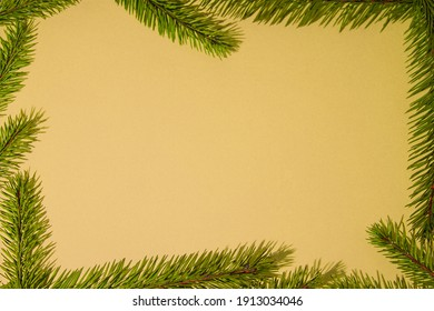 Creative layout with twigs of pine needles on a background with a hint of champagne. Minimal nature is the idea of love.
