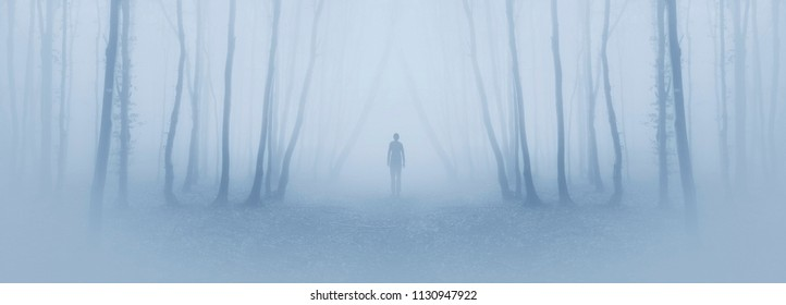 creative magical forest with man walking on foggy path