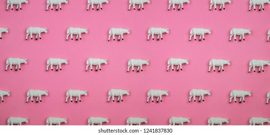 Creative and minimal pattern made of sheep. Pink background. Flat lay top view.
