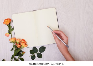 Creative mock up layout made with rose flower copy space on table homemade flat lay. Open sketchbook. Hand