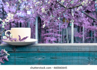 creative nature and coffee cup background. purple trees and blue wood.