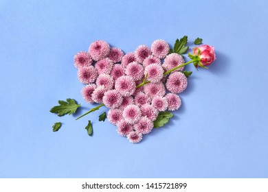Creative post card from hardy chrysanthemum flowers heart and rose as an arrow on a serenity color background with copy space. Congratulation card.