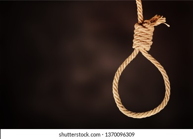 Creative social concept photo of rope noose with hangman's knot hanging in front of  black background.          - Image