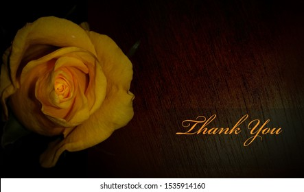A creative thank you card template design/a textured yellow rose print.