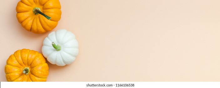 Creative Top view flat lay autumn composition. Frame concept pumpkins color paper background copy space. Template fall harvest thanksgiving halloween anniversary invitation cards. Long wide banner