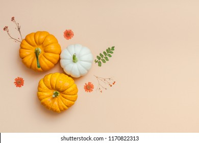 Creative Top view flat lay autumn composition. Frame made of pumpkins dried flowers leaves color paper background copy space. Template fall harvest thanksgiving halloween anniversary invitation cards