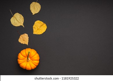 Creative Top view flat lay autumn composition. Сoncept small orange pumpkin dry leaves black background copy space minimalism Template fall harvest thanksgiving halloween anniversary invitation cards