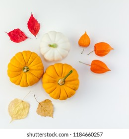 Creative Top view flat lay autumn composition. Pumpkins dried orange flowers leaves background copy space. Square Template fall harvest thanksgiving halloween anniversary invitation cards