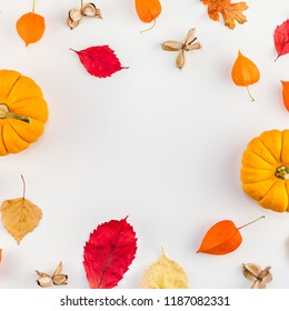 Creative Top view flat lay autumn composition. Pumpkins dried orange flowers leaves background copy space. Square Template frame fall harvest thanksgiving halloween anniversary invitation cards