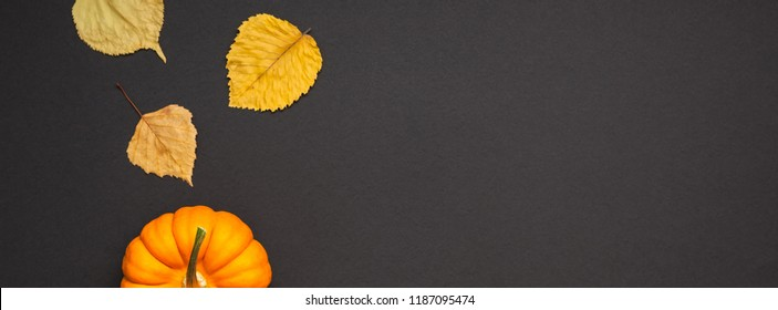 Creative Top view flat lay autumn composition. Concept small orange pumpkin dry leaves black background copy space minimalism Template fall harvest thanksgiving halloween anniversary invitation cards