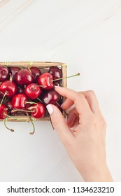 Creative top view of fresh ripe cherry in a small wicker basket with copy space isolated white background minimal style. Concept of summer fun and healthy eating. Template for your text or food design