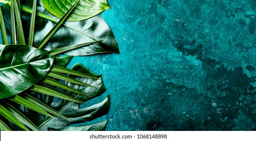 Creative tropical leaves background. Trandy tropical leaves on turquoise slate background - color of the year 2018. Top view, copy space.