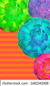 Moodboard Moodboard Aesthetic Fashion Pantone Colour Palettes