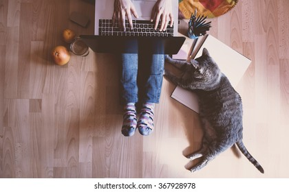 Creative workspace: girl working at the computer assisted by her cat.