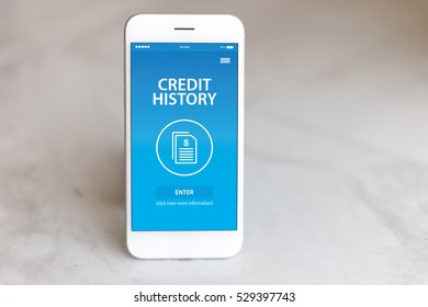 CREDIT HISTORY CONCEPT ON SCREEN