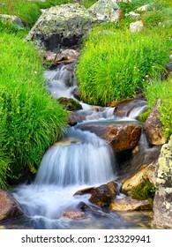 Creek among stone and grass. Summer composition