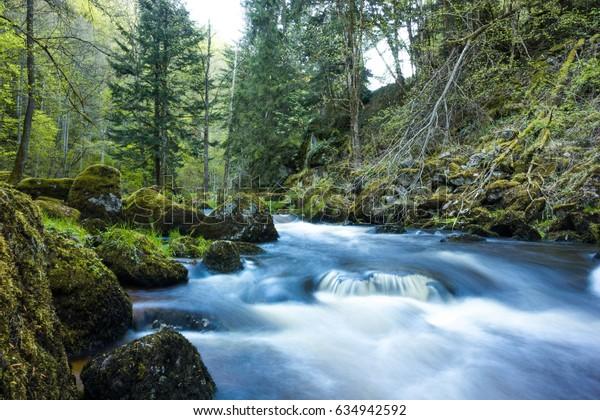Creek in Austria