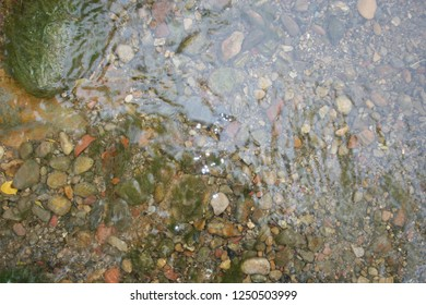 Creek, close up of water