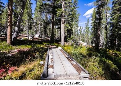 Creek crossing on one of the trails in the John Muir wilderness, Eastern Sierra mountains, California