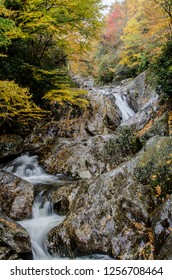 A creek meanders over a rock face while surrounding trees change color in fall