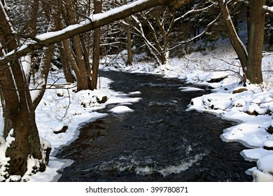 Creek in the snow and ice in the trees
