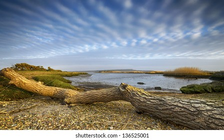 The creek at Stanpit Marsh a nature reserve in Christchurch harbour in Dorset under a mackerel sky.
