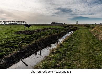 Creek through the green meadows of the polders in Uitkerke, Blankenberge, Belgium